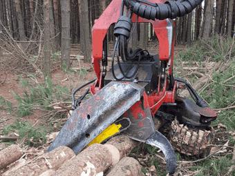 IFN vs INS sau diferenta intre biomasa aeriana si volumul de lemn comercializabil